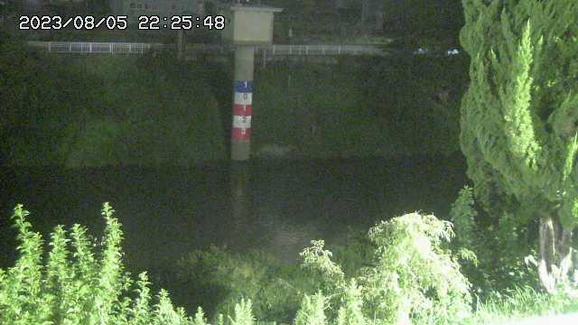 写真:巴川ライブカメラで撮影(10分おきに更新中)