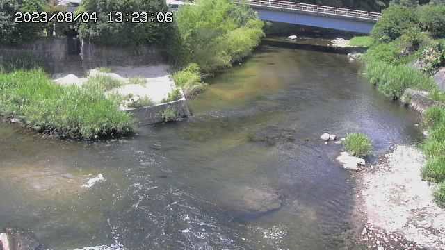 写真:大桑川/巴川ライブカメラで撮影(10分おきに更新中)